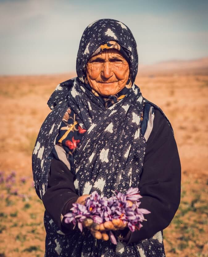 Safran Iranien Agriculture Biologique