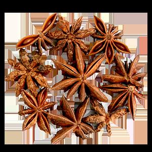 badiane-fruits-l-herbier-de-france