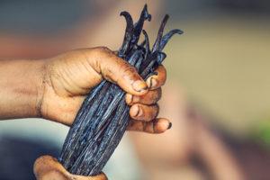 Filiere Vanille Madagascar Arcadie