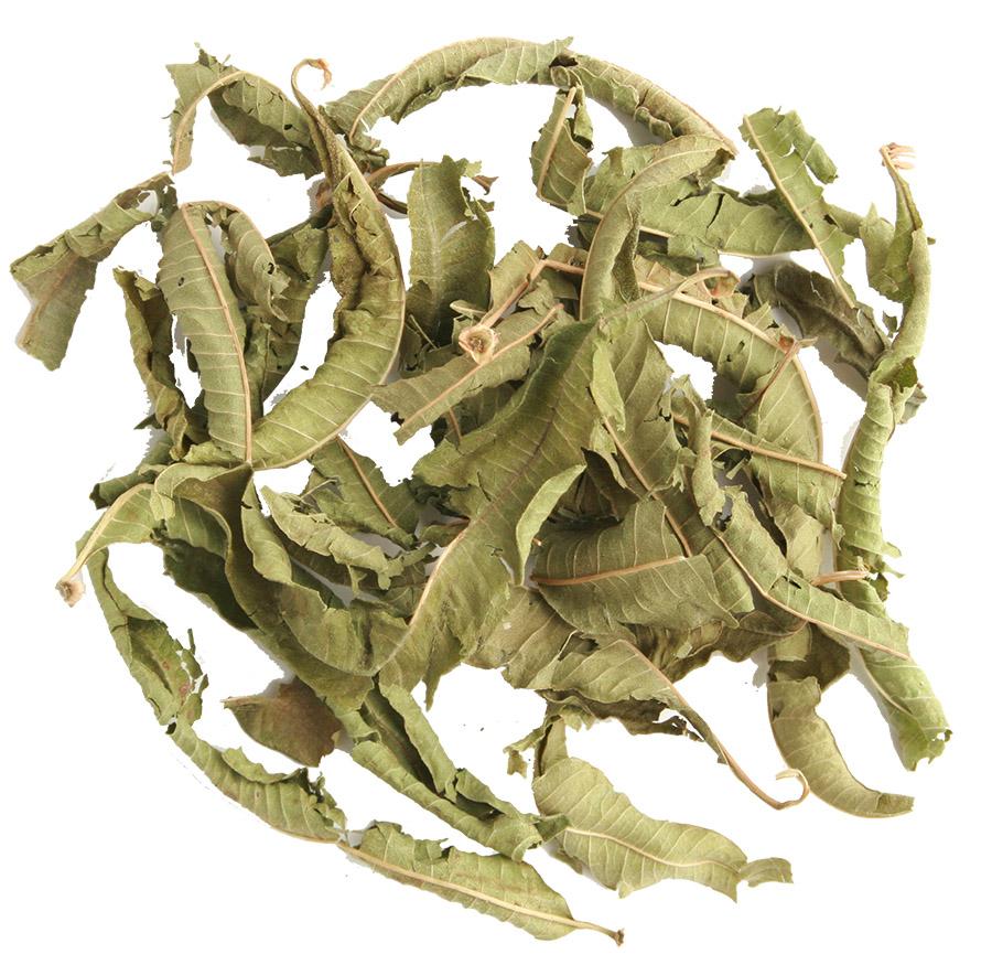 Arcadie verveine odorante feuilles bio