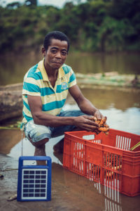 Curcuma Madagascar Producteur Radio Solaire