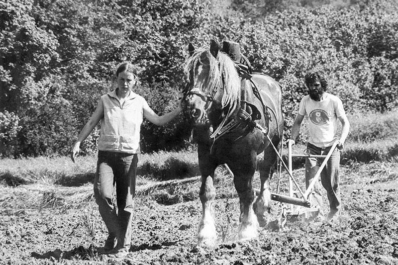 LABOUR_a_cheval_ariège