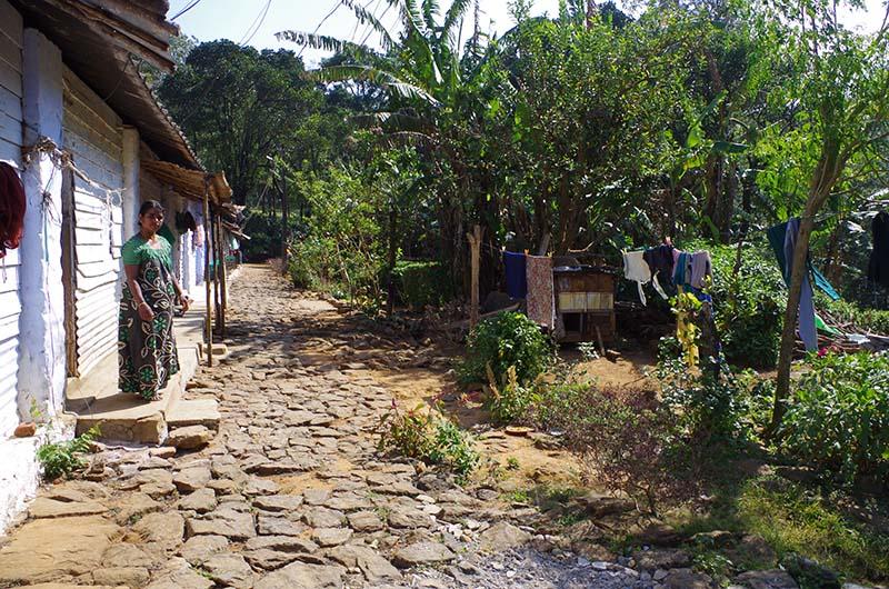 Habitations Eau Electricite Jardins Nelliyampathy Inde Arcadie