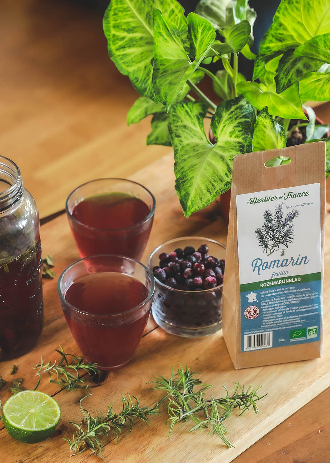 infusion romarin et myrtille froide