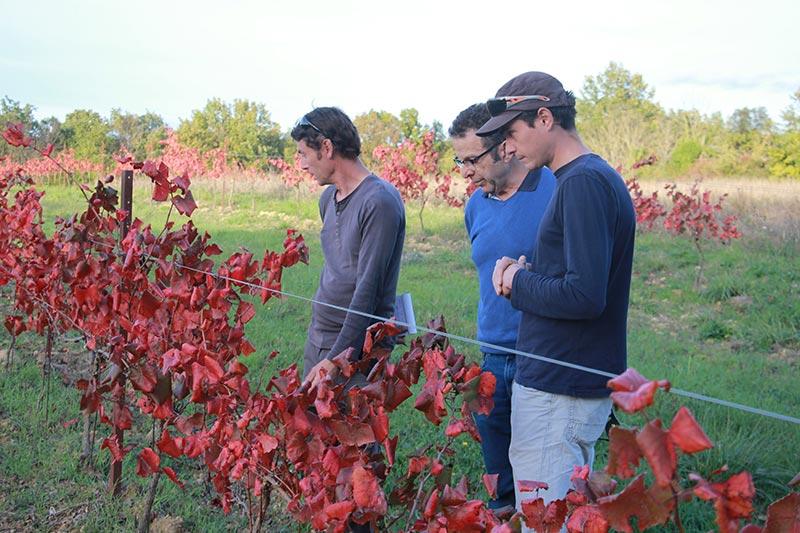 Stephan, Yoachim et Jean Marot conseiller en biodynamie